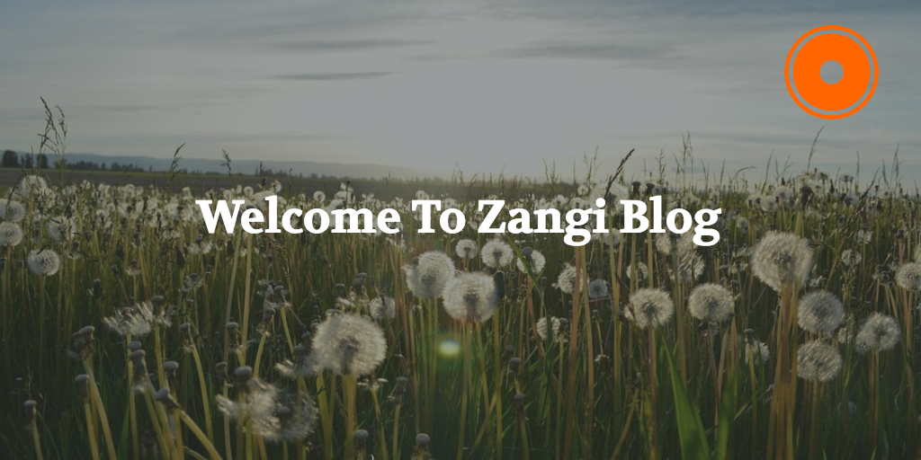 zangi-blog